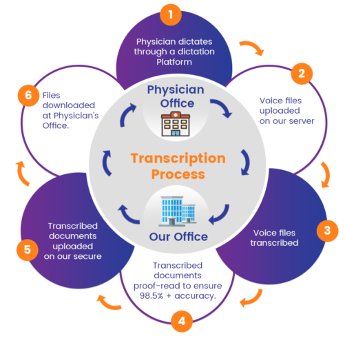 Transcription Process | Lifecycle | CrescereMed